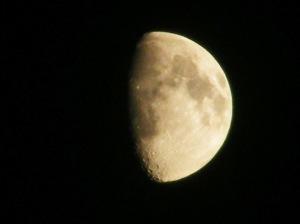 Half-Moon-02