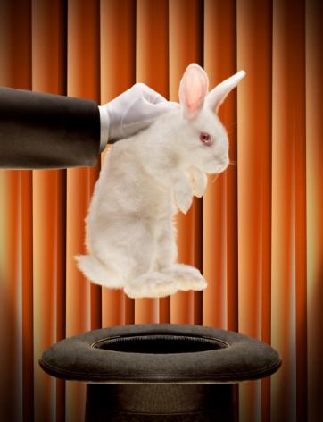 rabbitoutofahat1